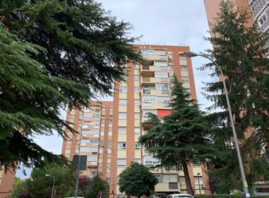 Piso Alquiler 3 habitaciones_ Pinar del Rey (4)